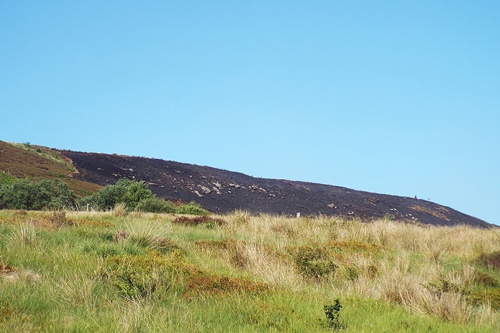 Copy of winter hill fire 001