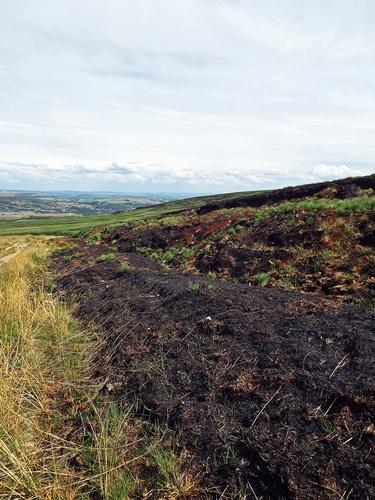 Copy of winter hill fire 125