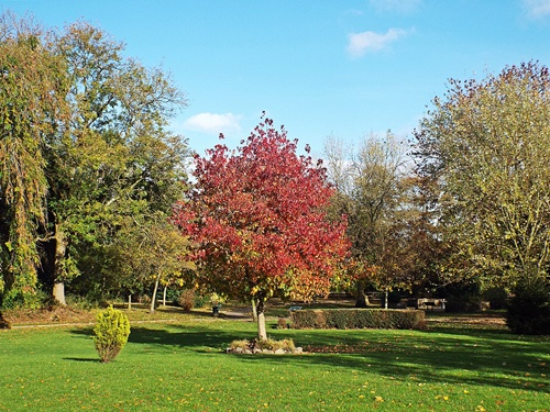 Copy of close park, radcliffe 002