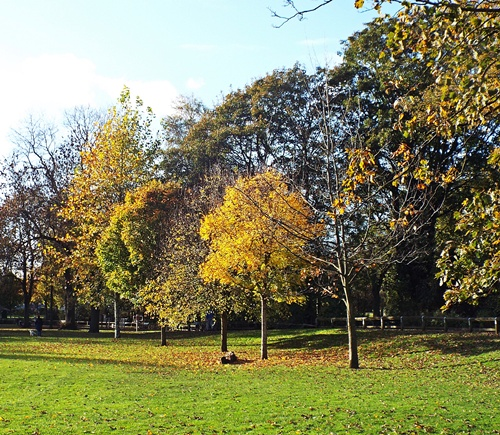 Copy of close park, radcliffe 025