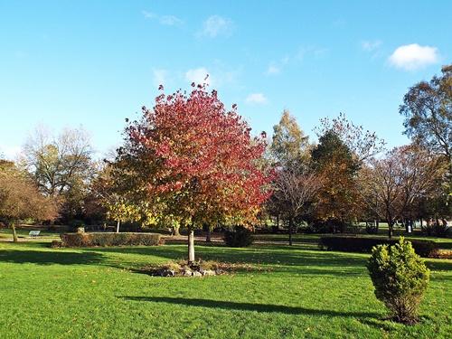 Copy of close park, radcliffe 028