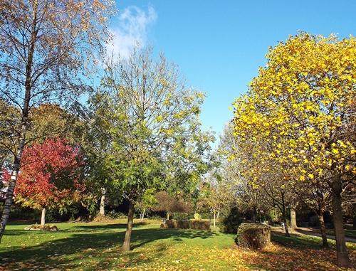 Copy of close park, radcliffe 041