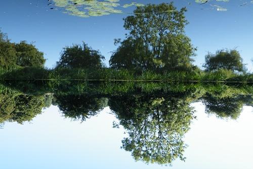 copy of wyton lakes - aug. 2010 024