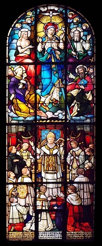 Immaculate Conception Window 5