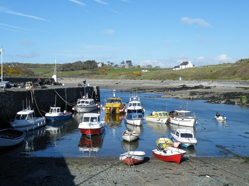 Anglesey - May 2013 045
